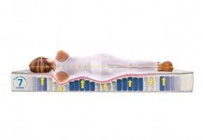 Двулицев матрак Favorite Nova Orthopedic с покет пружини - ТЕД